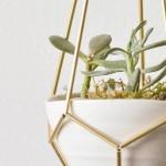 Postolje za biljke