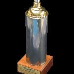 Specijalne nagrade u raznim takmičenjima